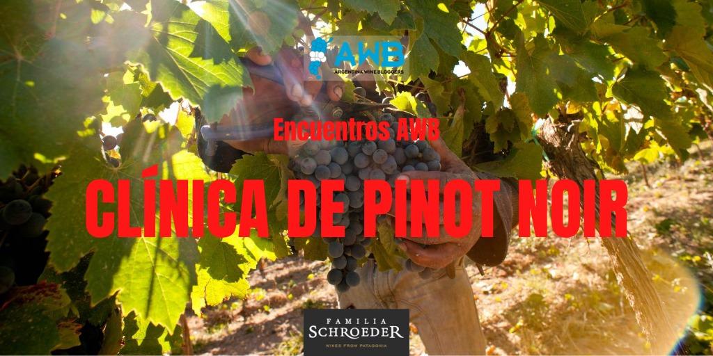 Clínica de Pinot Noir